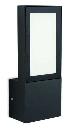 Gamay Outdoor Wall Light in Graphite Finish
